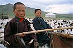 Young boys on horseback herding sheep, Mongolia, Central Asia, Asia                                                                                                                                      Stock Photo - Premium Rights-Managed, Artist: Robert Harding Images    , Code: 841-03032941