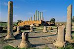 The Roman site of Thuburbo Majus, The Capitol and the Temple of Mercury, Tunisia, North Africa