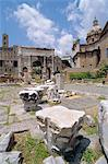 Forum,Rome,Italy                                                                                                                                                                                         Stock Photo - Premium Rights-Managed, Artist: Robert Harding Images    , Code: 841-03034363