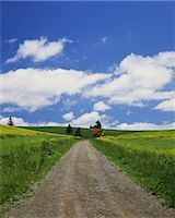 Country road                                                                                                                                                                                             Stock Photo - Premium Rights-Managednull, Code: 859-03039658