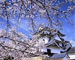 Shiga Prefecture Hikone Castle                                                                                                                                                                           Stock Photo - Premium Rights-Managed, Artist: Aflo Relax               , Code: 859-03040246