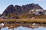 Peaks of Cradle Mountain, 1545m, reflected in tarn on the Overland Track, Cradle Mountain Lake St. Clair National Park, part of Tasmanian Wilderness, UNESCO World Heritage Site, Tasmania, Australia, Pacific Stock Photo - Premium Rights-Managed, Artist: Robert Harding Images    , Code: 841-03055059