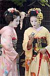 Geisha, maiko (trainee geisha) in Gion, Kyoto city, Honshu, Japan, Asia                                                                                                                                  Stock Photo - Premium Rights-Managed, Artist: Robert Harding Images    , Code: 841-03056245