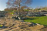Paved roadway, Via Praetoria, and soldiers quarters, Roman settlement and fort at Vindolanda, Roman Wall south, UNESCO World Heritage Site, Northumbria, England, United Kingdom, Europe                 Stock Photo - Premium Rights-Managed, Artist: Robert Harding Images    , Code: 841-03061121