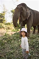 Two year old girl and the elephant that will take her on safari, at the Island Jungle Resort hotel, Royal Chitwan National Park, Terai, Nepal, Asia                                                      Stock Photo - Premium Rights-Managednull, Code: 841-03062395