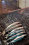 Mackerel on grill, street market, Palermo, Sicily, Italy, Europe