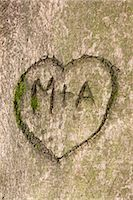 Initials and Heart in Tree Trunk                                                                                                                                                                         Stock Photo - Premium Rights-Managednull, Code: 700-03067919