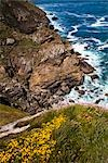 Pointe du Van, Finistere, Brittany, France Stock Photo - Premium Rights-Managed, Artist: R. Ian Lloyd             , Code: 700-03068120