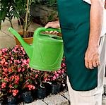Man holding a watering can in a greenhouse                                                                                                                                                               Stock Photo - Premium Rights-Managed, Artist: Glowimages               , Code: 837-03072521