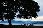 Locarno Beach, Vancouver, British Columbia, Canada                                                                                                                                                       Stock Photo - Premium Rights-Managed, Artist: Ed Gifford               , Code: 700-03075302