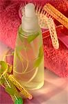 Hair spray with sage Stock Photo - Premium Royalty-Free, Artist: foodanddrinkphotos, Code: 689-03124727