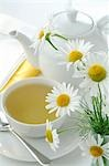 Tea pot and tea cup with camomile Stock Photo - Premium Royalty-Free, Artist: Michael Alberstat, Code: 689-03125558