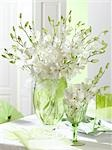 White bouquet of orchids Stock Photo - Premium Royalty-Freenull, Code: 689-03126211