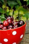 Dotted bowl with cherries Stock Photo - Premium Royalty-Free, Artist: AlaskaStock              , Code: 689-03130719