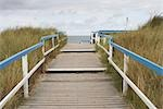 Boardwalk to Beach, Kampen, Island of Sylt, Schleswig-Holstein, Germany Stock Photo - Premium Rights-Managed, Artist: photo division           , Code: 700-03152694