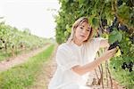 Portrait of Wine Maker in Vineyard Stock Photo - Premium Royalty-Free, Artist: Hiep Vu                  , Code: 600-03152999