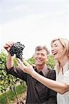 Wine Makers Holding Grapes Stock Photo - Premium Royalty-Free, Artist: Hiep Vu                  , Code: 600-03153000