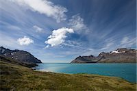 Fortuna Bay, South Georgia Island, Antarctica Stock Photo - Premium Rights-Managednull, Code: 700-03161706