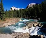 BRITISH COLUMBIA CANADA YOHO NATIONAL PARK KICKING HORSE RIVER FALLS