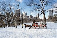 NEW YORK NY HORSE AND CARRIAGE IN CENTRAL PARK IN SNOW Stock Photo - Premium Rights-Managednull, Code: 846-03165457