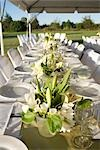 Table Set for Wedding Reception Stock Photo - Premium Rights-Managed, Artist: Jennifer Burrell, Code: 700-03178416