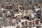 Chalets in Winter, Arosa, Switzerland Stock Photo - Premium Rights-Managed, Artist: Siephoto, Code: 700-03178594