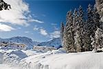 Chalets in Winter, Arosa, Switzerland Stock Photo - Premium Rights-Managed, Artist: Siephoto, Code: 700-03178595