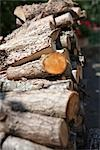 Close-up of Woodpile Stock Photo - Premium Royalty-Free, Artist: Holger Hill, Code: 600-03178788