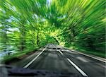 Tree Lined Road Stock Photo - Premium Rights-Managed, Artist: Aflo Relax, Code: 859-03194001