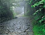 Old Japanese Trail Stock Photo - Premium Rights-Managed, Artist: Aflo Relax, Code: 859-03194243