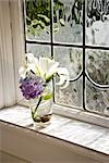 Vase of flowers near window Stock Photo - Premium Rights-Managed, Artist: Kablonk! RM, Code: 842-03200949