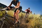Group of Mountain Bikers on Dirt Trail, Near Steamboat Springs, Routt County, Colorado, USA