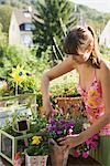 Woman Gardening Stock Photo - Premium Rights-Managed, Artist: Klick, Code: 700-03229392