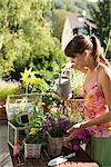 Woman Gardening Stock Photo - Premium Rights-Managed, Artist: Klick, Code: 700-03229393