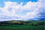 Ireland;  Scenic view of countryside Stock Photo - Premium Rights-Managed, Artist: IIC, Code: 832-03232424