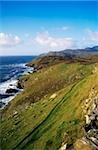 Co Donegal, Near Kilcar, Killybegs Stock Photo - Premium Rights-Managed, Artist: IIC, Code: 832-03232807