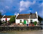 Kilmacrenin, Co Donegal, Ireland;  Man thatching a house Stock Photo - Premium Rights-Managed, Artist: IIC, Code: 832-03232840