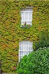 Butler House, Kilkenny City, County Kilkenny, Ireland; Ivy covered historic guesthouse Stock Photo - Premium Rights-Managed, Artist: IIC, Code: 832-03233173