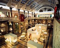 exhibition - National Museum of Ireland, Dublin, Co Dublin, Ireland;  Main hall in the museum of natural history Stock Photo - Premium Rights-Managednull, Code: 832-03233278
