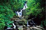 Torc Waterfall, Killarney National Park, County Kerry, Ireland Stock Photo - Premium Rights-Managed, Artist: IIC, Code: 832-03233394