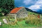 Black Valley, Killarney, County Kerry, Ireland; Old, traditional Irish barn Stock Photo - Premium Rights-Managed, Artist: IIC, Code: 832-03233481