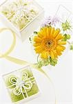 Flower gift box Stock Photo - Premium Royalty-Free, Artist: Sheltered Images, Code: 670-03235113