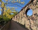 Pathway from Johannisburg Castle to the Pompejanum, Aschaffenburg, Bavaria, Germany Stock Photo - Premium Rights-Managed, Artist: Raimund Linke, Code: 700-03243981