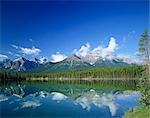 The Rockies and Herbert Lake, Banff National Park, Canada Stock Photo - Premium Rights-Managed, Artist: Oriental Touch, Code: 855-03254998
