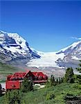 Columbia Icefield, Jasper National Park, Canada Stock Photo - Premium Rights-Managed, Artist: Oriental Touch, Code: 855-03255025