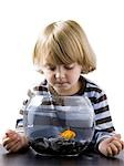 USA, Utah, Provo, Boy (2-3) watching goldfish in bowl Stock Photo - Premium Royalty-Free, Artist: Narratives, Code: 640-03257549