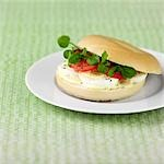 Bagel with egg,tomato watercress and dijon mustard mayo Stock Photo - Premium Rights-Managed, Artist: foodanddrinkphotos, Code: 824-03285385