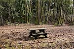 Picnic Table in Clearing in Forest, Squamish, British Columbia, Canada Stock Photo - Premium Rights-Managed, Artist: Grant Harder, Code: 700-03290009