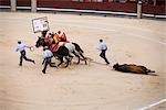 Removing Dead Bull, Plaza de Toros. Madrid, Spain Stock Photo - Premium Rights-Managed, Artist: Grant Harder, Code: 700-03290014