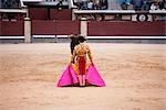 Matador and Bull, Plaza de Toros. Madrid, Spain Stock Photo - Premium Rights-Managed, Artist: Grant Harder, Code: 700-03290016